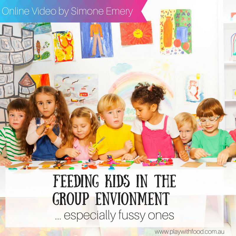Fussy Eating in the Group Environment: Education Professional Video
