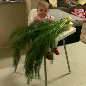 Fennel Frond Pesto for Kids   Play with Food