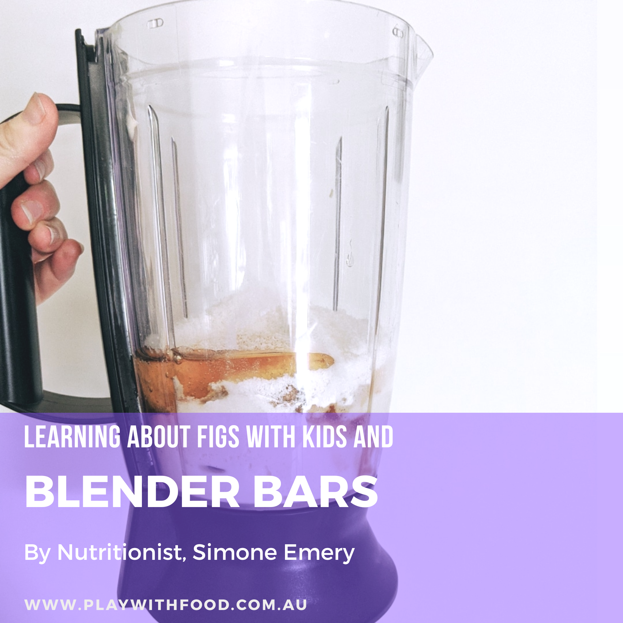 Fig Blender Bars